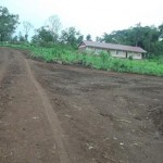 Our new road to the school and the phanage.